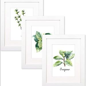 Trees&Forrest 8x10 PictureFrames w/5x7 Mat,Packof3